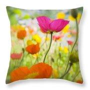 Iceland Poppies Throw Pillow