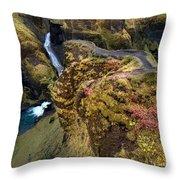 Icelandic Autumn Throw Pillow