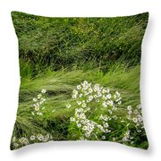 Icelandic Daisies Throw Pillow