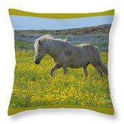 Icelandic Horse, Iceland Throw Pillow
