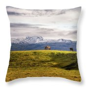 Icelandic Horses On The Countryside  Throw Pillow