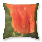 Icelandic Poppy 1124 Throw Pillow