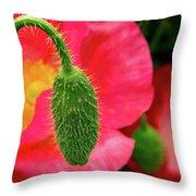 Icelandic Poppy Pod Throw Pillow