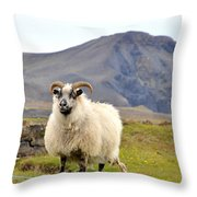 Icelandic Sheep Throw Pillow