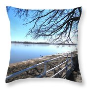 Icey River Throw Pillow