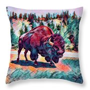 Icon Of The West Throw Pillow