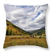 Iconic Colorado Throw Pillow