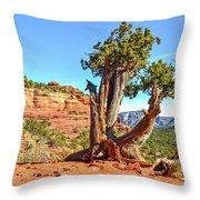 Iconic Southwest Throw Pillow