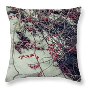 Icy Berries Throw Pillow