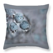 Icy Blue Berries Throw Pillow