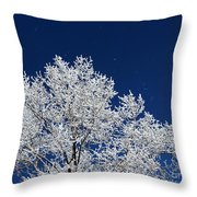 Icy Brilliance Throw Pillow