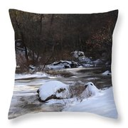 Icy Creek Throw Pillow