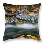 Icy Foliage Stream Throw Pillow