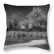 Icy Marsh Throw Pillow