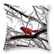 Icy Perch Throw Pillow