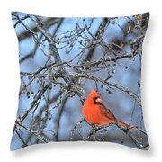 Icy Red Throw Pillow