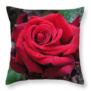 Icy Rose Throw Pillow