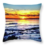 Icy Waters Throw Pillow