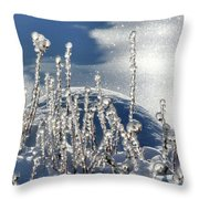 Icy World Throw Pillow