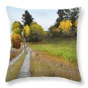 Idaho Backroad Autumn Throw Pillow