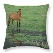 Idaho Farm Horse1 Throw Pillow