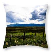 Idaho Field Throw Pillow