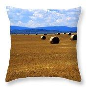 Idaho Hay Throw Pillow