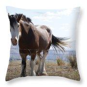 Idaho Work Horse 2 Throw Pillow