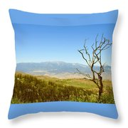 Idyllwild Mountain View With Dead Tree Throw Pillow