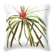 Ieie Plant Art Throw Pillow