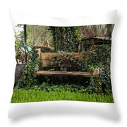 If I Could Tell A Story Throw Pillow