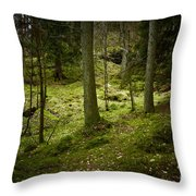 If You Go Down..................... Throw Pillow