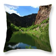 If You Seek Beauty In A River  Throw Pillow