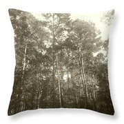 If You Were Here Throw Pillow