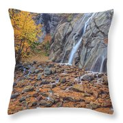 If You Fill Your Head With Information, There Won't Be Room For Wisdom, Imagination And Inspiration. Throw Pillow