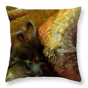 Igneous Throw Pillow