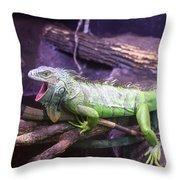Iguana 339 Throw Pillow