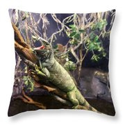 Iguana 340 Throw Pillow