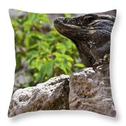 Iguana At Talum Ruins Mexico 2 Throw Pillow