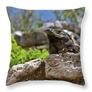 Iguana At Talum Ruins Mexico Throw Pillow