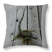 Iguana At The Ready Throw Pillow