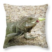 Iguana Eating Lettuce With His Tongue Sticking Out Throw Pillow