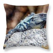 Iguana In Ek Balam Throw Pillow