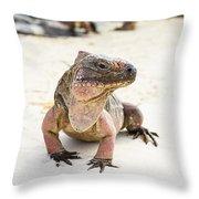 Iguana On The Beach Throw Pillow
