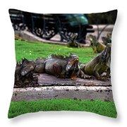 Iguana Trio Throw Pillow