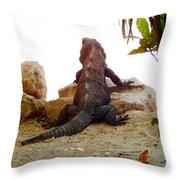 Iguana Watchout Throw Pillow