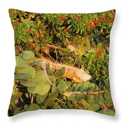 Iguanas Throw Pillow