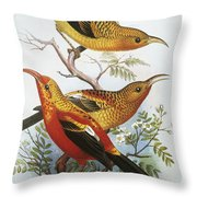 IIwi Throw Pillow