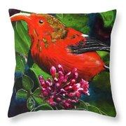 IIwi Scarlet Honeycreeper Bird #339 Throw Pillow