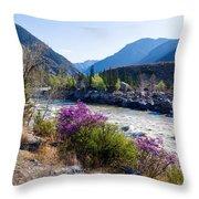 Ilgumensky Rapids At Spring Time. Altay Mountains Throw Pillow